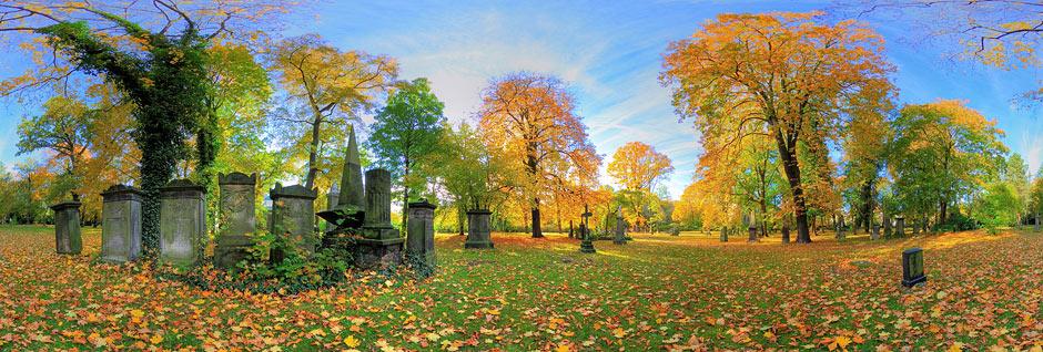 Magni_Friedhof