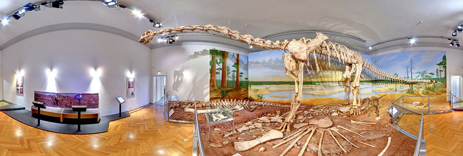 NH_Museum_Dinosaal