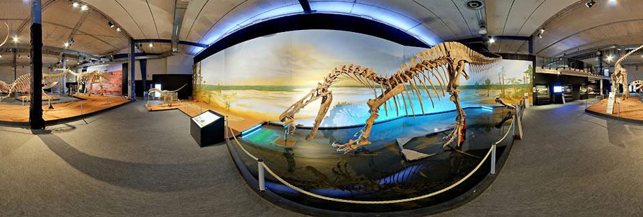 Dino Ausstellung Braunschweig